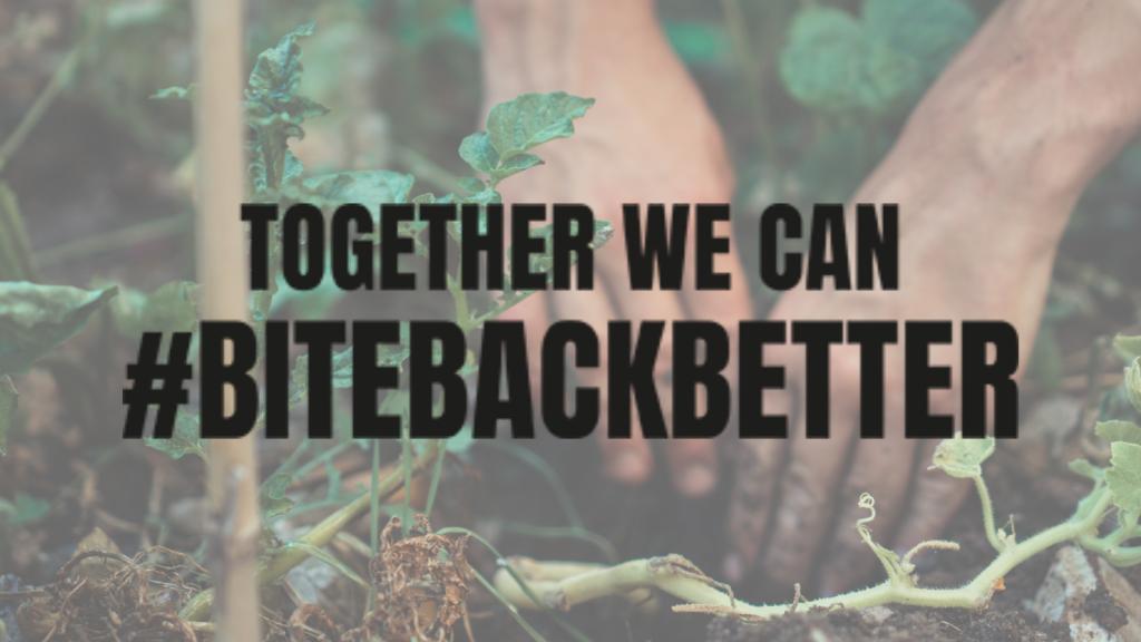Together we can bite back better