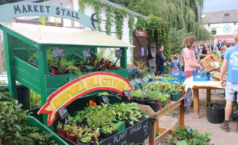Windmill Hill City Farm plant sale